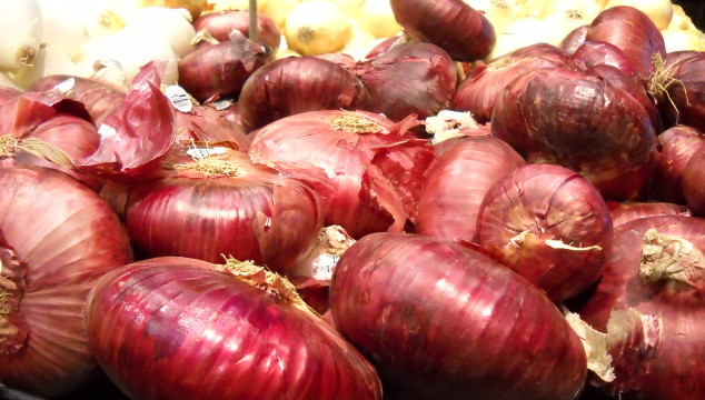 Onion Juice – The Poor Man's Pseudocatalase